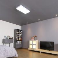 마빈 화이트 2등 LED 50W 거실등